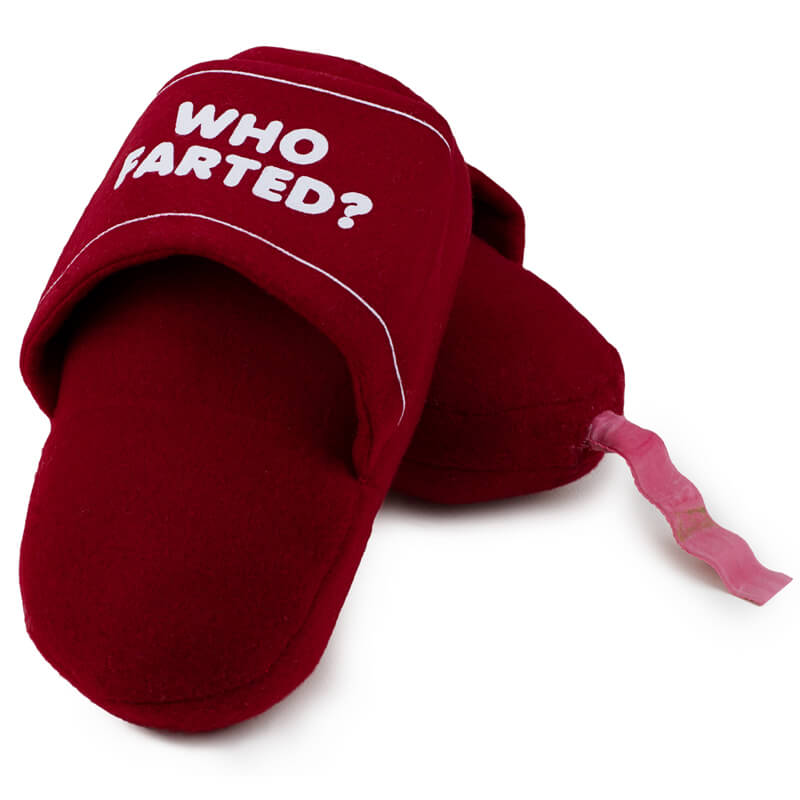 Who Farted Slippers With Sounds