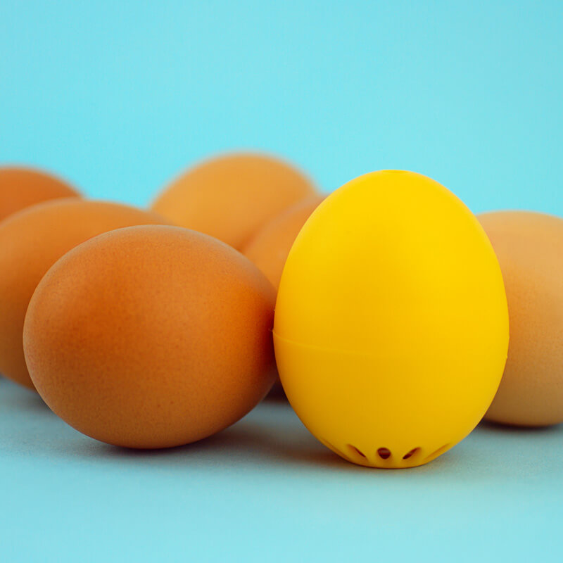 Image of The Beep Egg