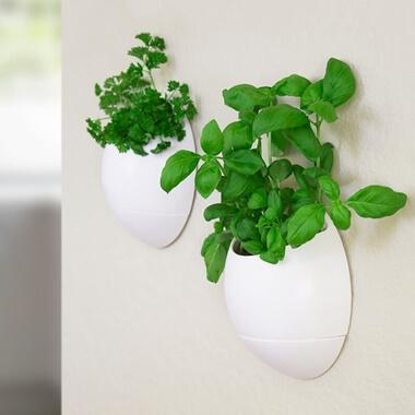 Eco Pod - Self Watering Herb Pot (Set of 2)