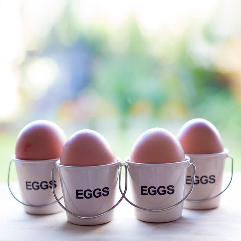 Bucket Egg Cups