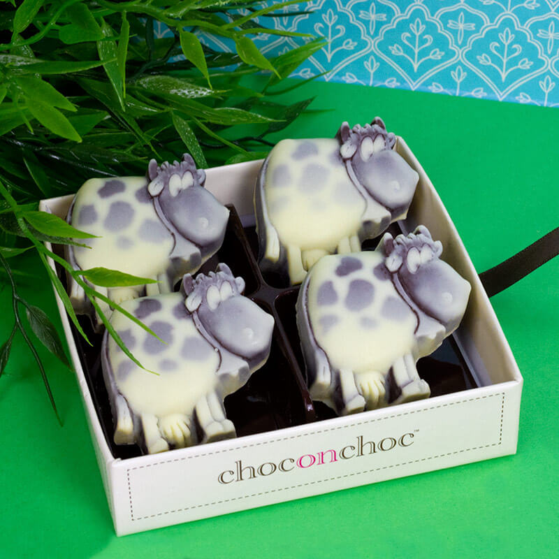 Easter gift ideas with a difference buy from prezzybox chocolate cows negle Images