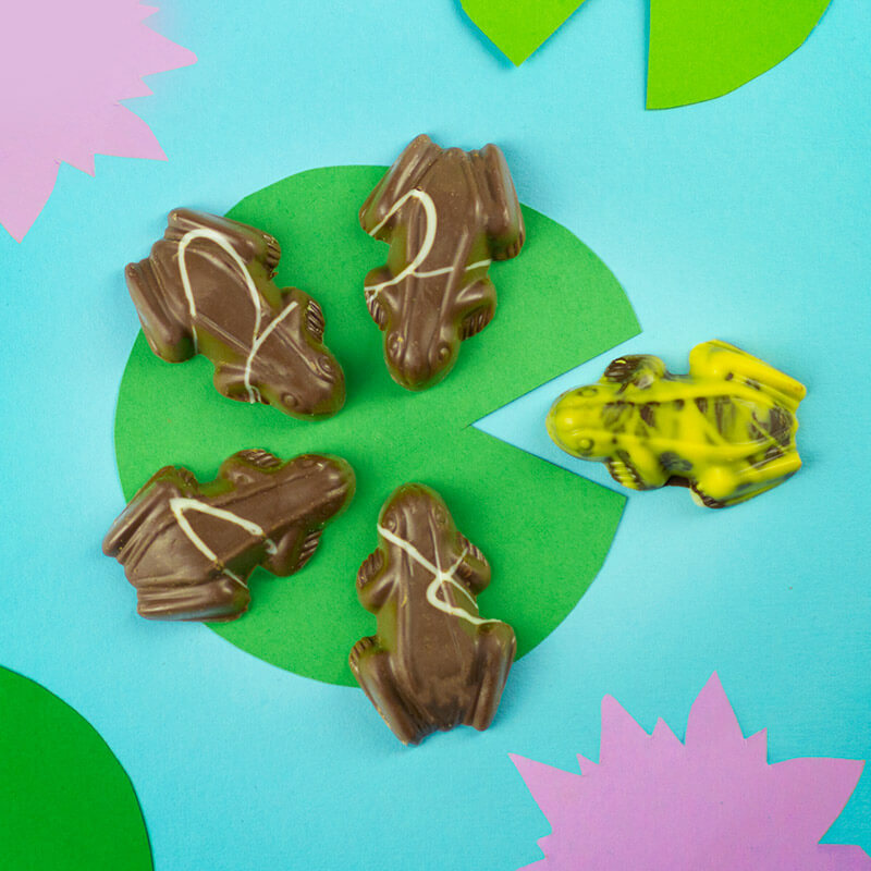 Hopping Popping Chocolate Frogs