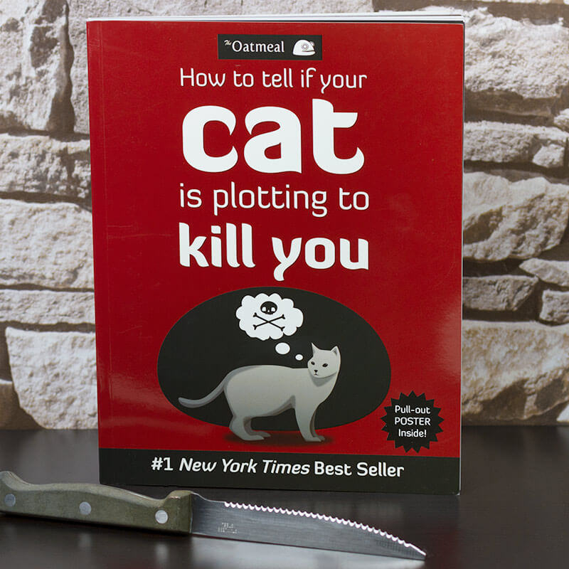 How To Tell If Your Cat Is Plotting Kill You