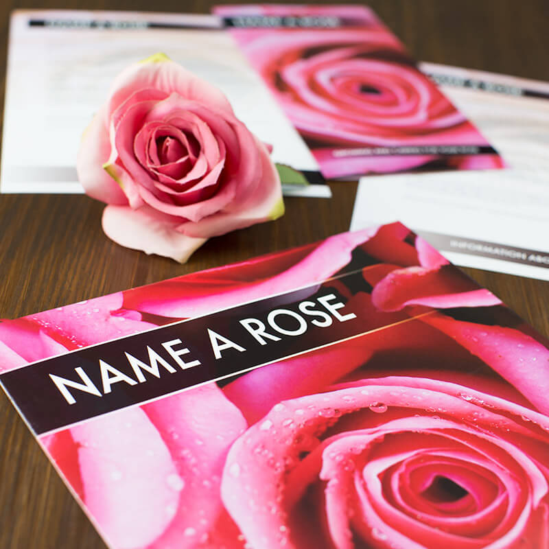 Name A Rose Gift Pack