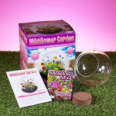 Wildflower Glass Terrarium