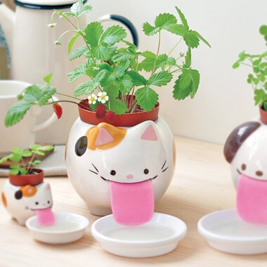 Papa Peropon Drinking Cat Planter - Wild Strawberry