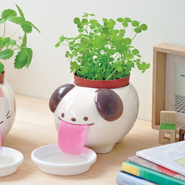 Papa Peropon Drinking Dog Planter - Clover