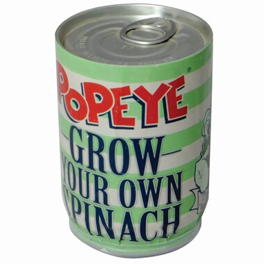 Popeye Grow Your Own Spinach In A Can
