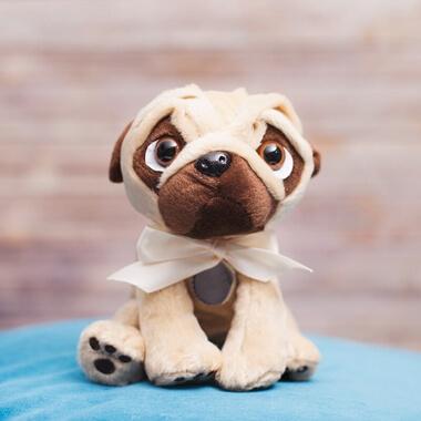 Personalised Pug