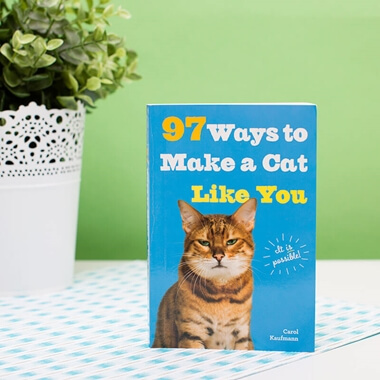 97 Ways To Make A Cat Like You