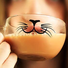 Cat Glass Cup
