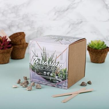 Grow Your Own Terrarium