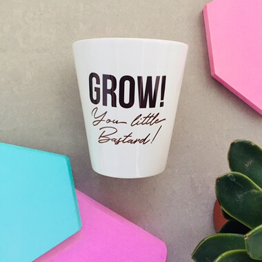 Grow You B*****D Flower Pot