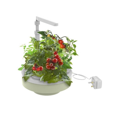 Grofresh Kitchen Gardener Deluxe - Green