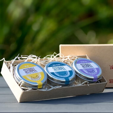 Seedball Gift Box: Bee Mix, Butterfly Mix, Urban Meadow Mix