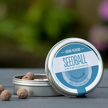 Seedball Urban Meadow Mix