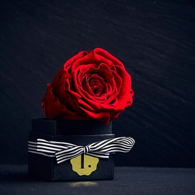 Personalised Lux Single Eternity Rose Mini