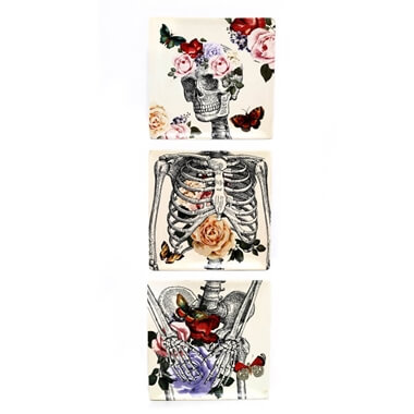 Skeleton Plate Gift Set