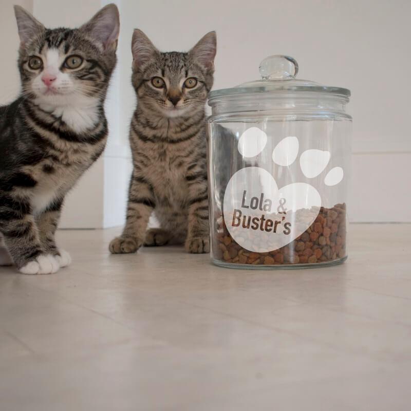 Personalised Cat Treats Jar