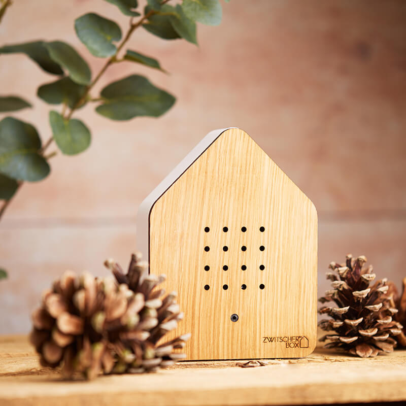 Zwitscherbox Motion Sensor Bird Sound Box - White Oak