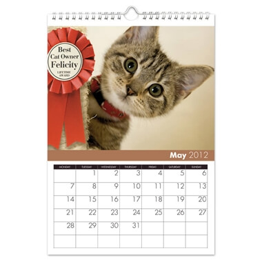 Cats Personalised Calendar