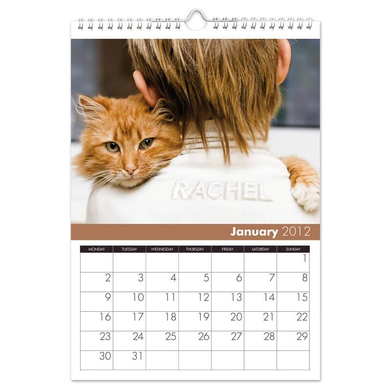 Cats Personalised Calendar