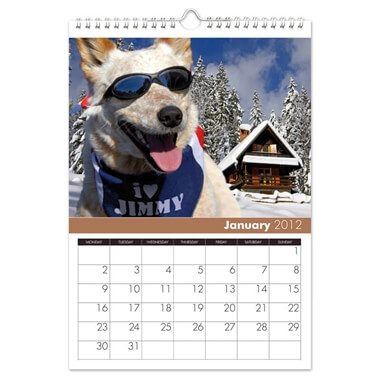 Dogs Personalised Calendar
