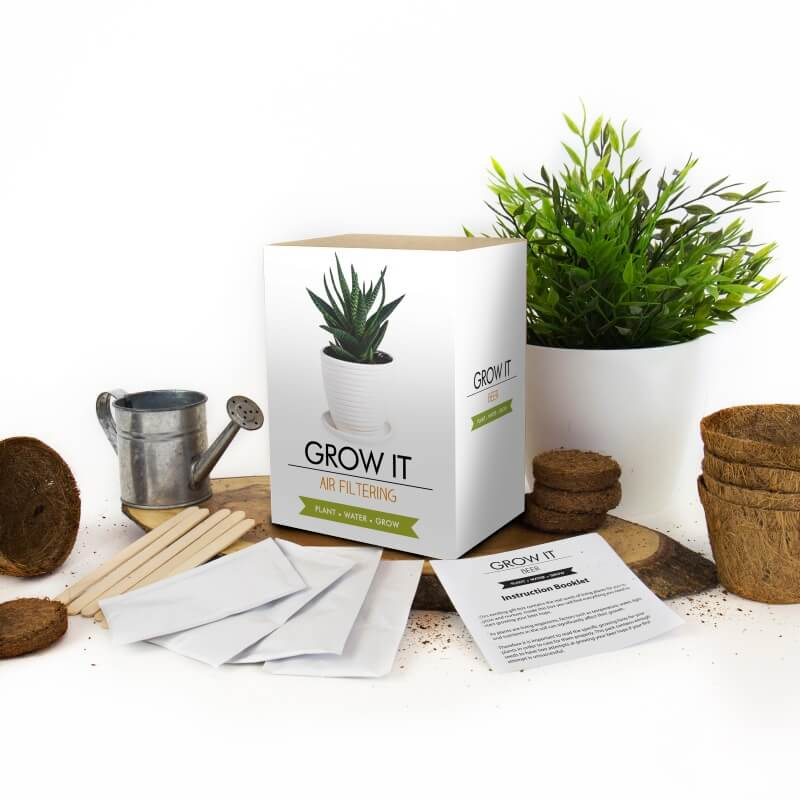 Grow it - Air Filtering Plant