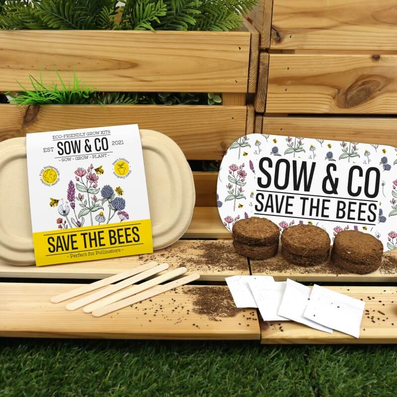 Save The Bees - Sow & Co Eco Grow Kit