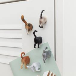 Cat Butt Magnets x 6