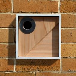 Urban Bird Nestbox