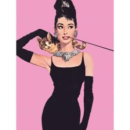 Audrey Hepburn Pink Canvas