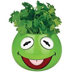 Muppets Planter - Kermit