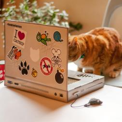 Kitty Laptop Cat Scratch Pad