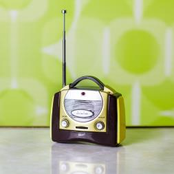 Mini Retro Radio