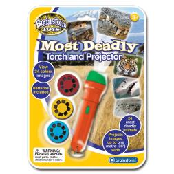 Most Deadly Torch & Projector
