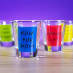 Friends Shot Glasses
