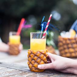 Pineapple Cup Holders And Hi Ball Glasses- 4 Pack