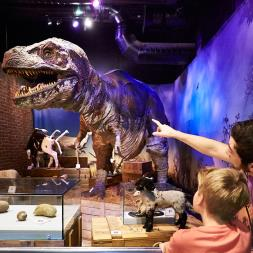 Family Entry to Ripley's Believe it or Not! Special Offer