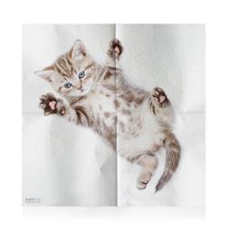 Cat Napkins