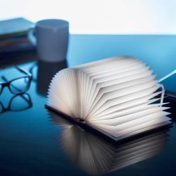 Bright Book Light