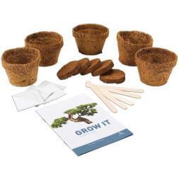 Grow it - Bonsai Tree